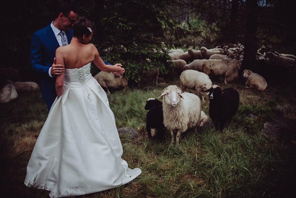 ślub na rusinowej polanie 25- tatrafoto_www -1000